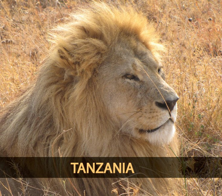 View Tanzania Zanzibar by Vlao