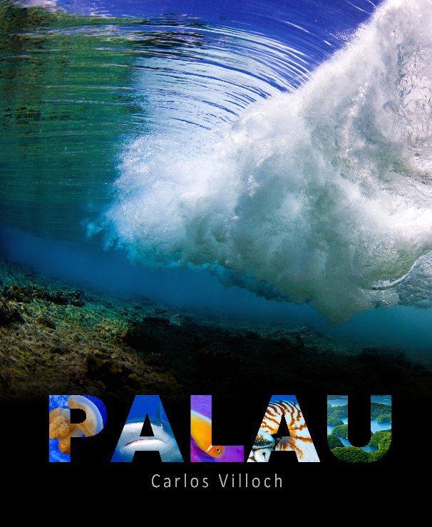 View PALAU by Carlos Villoch