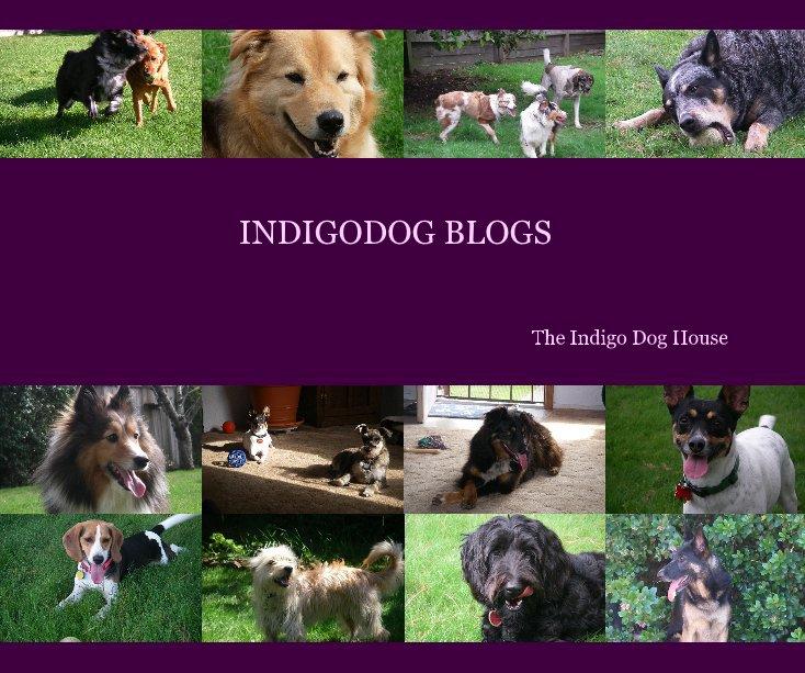 View INDIGODOG BLOGS by The Indigo Dog House