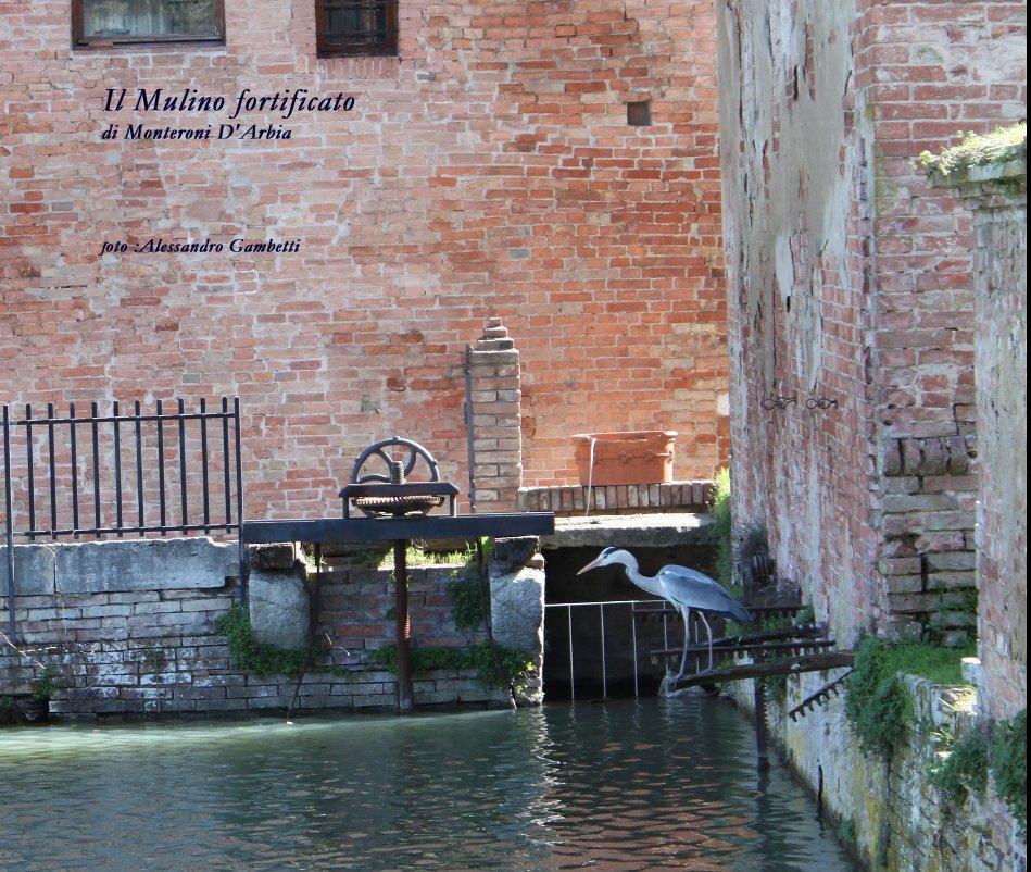 Visualizza Il Mulino fortificato di Monteroni D'Arbia di :Alessandro Gambetti