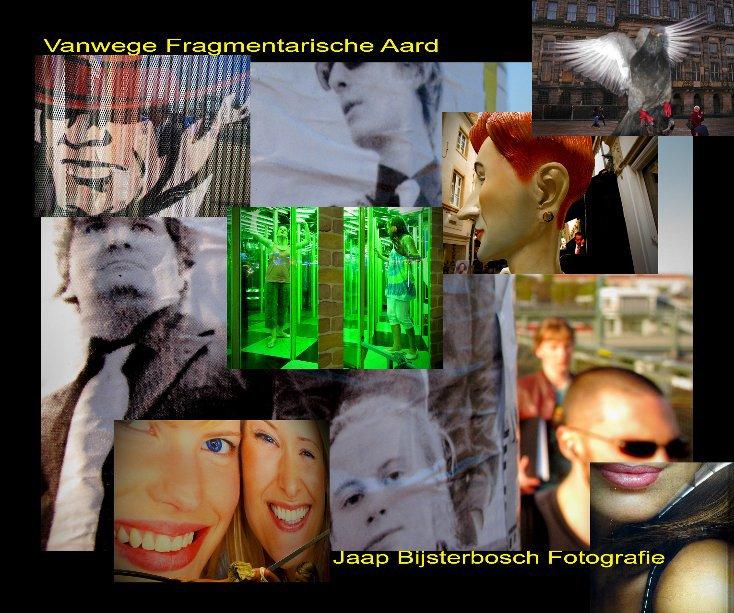 View Vanwege Fragmentarische Aard by Jaap Bijsterbosch