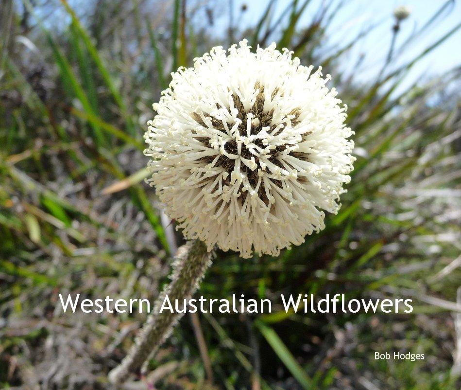 View Western Australian Wildflowers by Bob Hodges