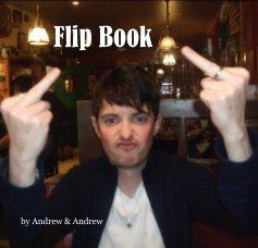 Flip Book book cover