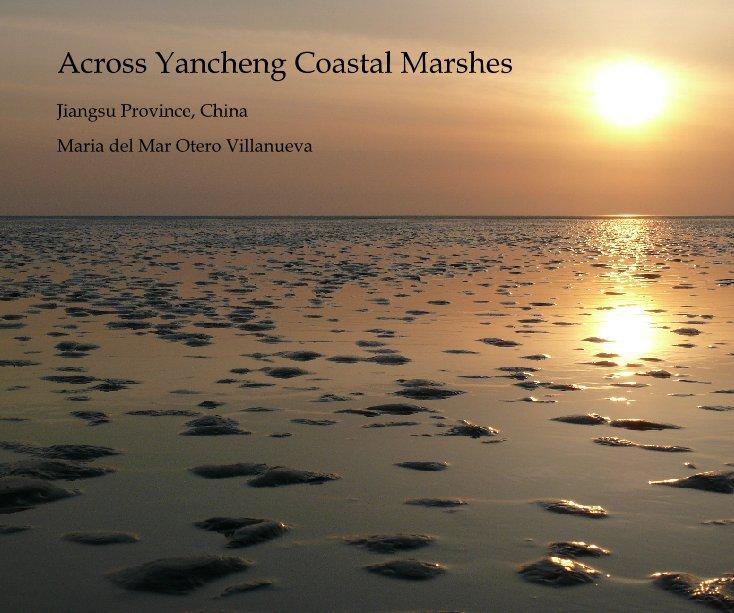 View Across Yancheng Coastal Marshes by Maria del Mar Otero Villanueva