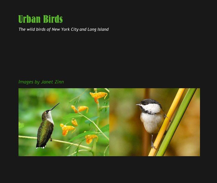View Urban Birds by Janet Zinn