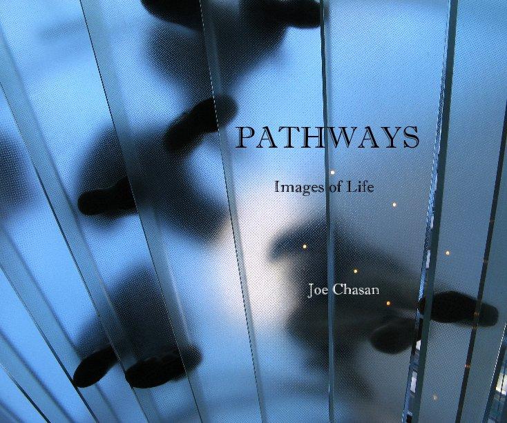View PATHWAYS by Joe Chasan