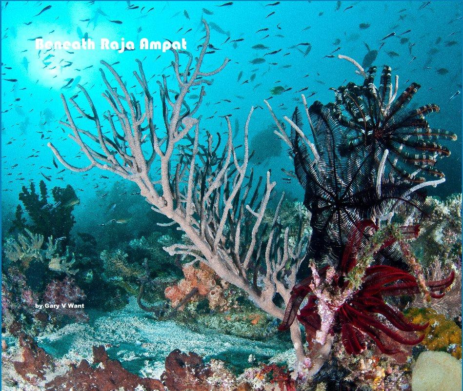 View Beneath Raja Ampat by Gary V Want