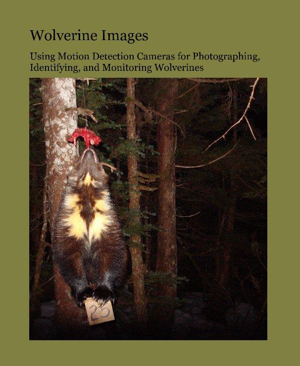 View Wolverine Images by Audrey J. Magoun, Patrick Valkenburg, Dale N. Pedersen, Clinton D. Long, and Richard E. Lowell