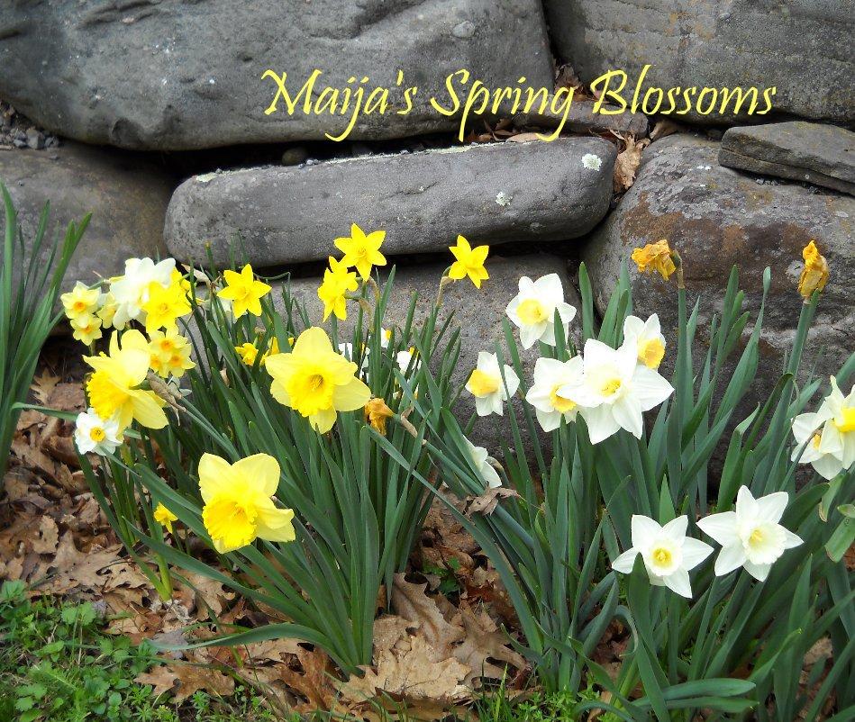 View Maija's Spring Blossoms by Irene Aizstrauts