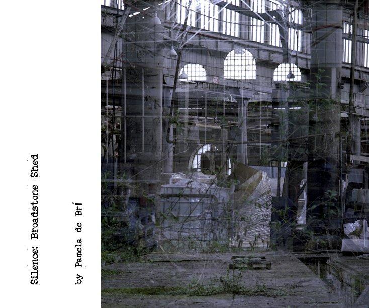View Silence: Broadstone Shed by Pamela de Brí