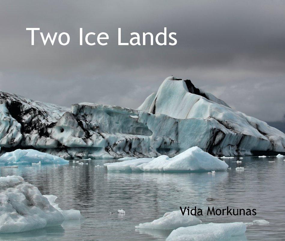 View Two Ice Lands Vida Morkunas by Vida Morkunas