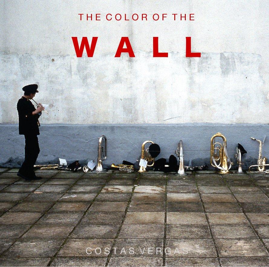 View THE COLOR OF THE WALL by C O S T A S V E R G A S