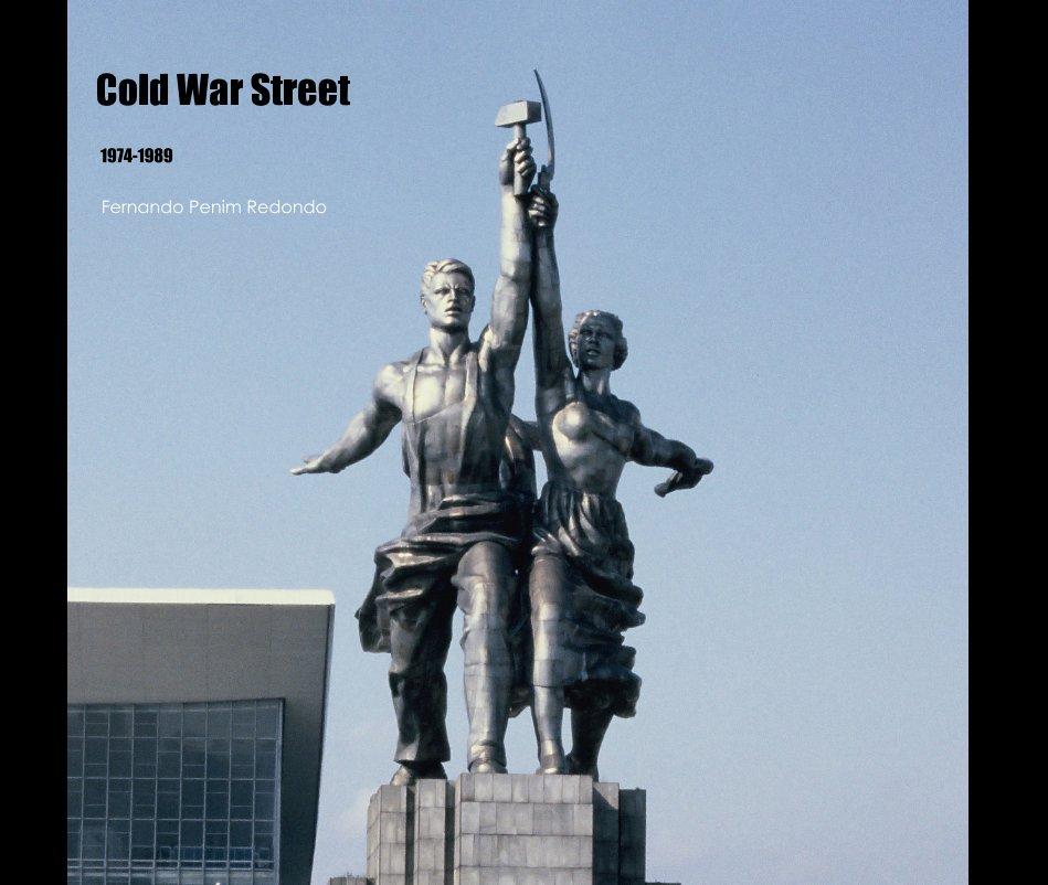 View Cold War Street, 1974-89 by Fernando Penim Redondo