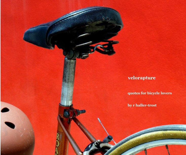 View velorapture by r haller-trost