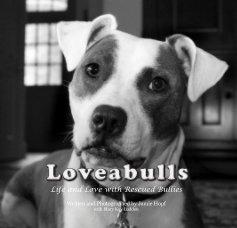 Loveabulls book cover