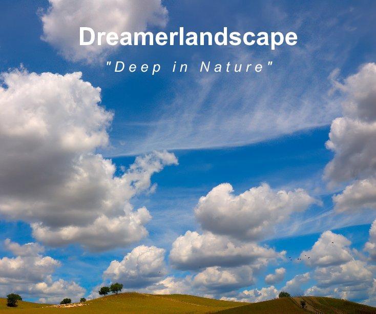 Visualizza Dreamerlandscape di Fortunato Gatto, Salvo Orlando, Matteo Zanvettor, Mauro Tronto