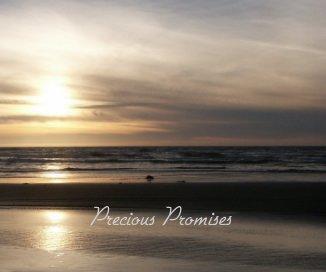 Precious Promises book cover