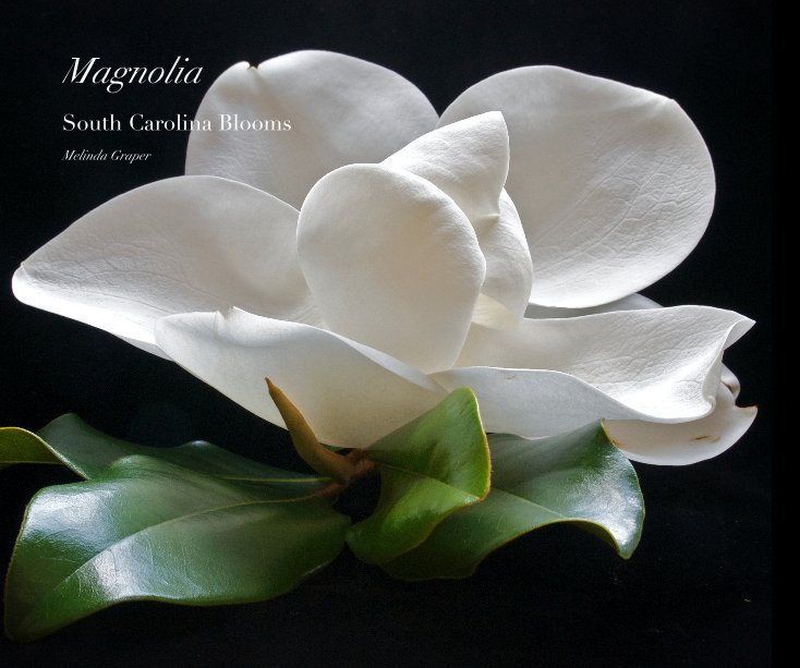 Bekijk Magnolia op Melinda Graper