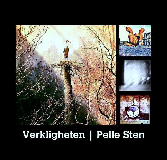 View Verkligheten | Pelle Sten by Pelle Sten