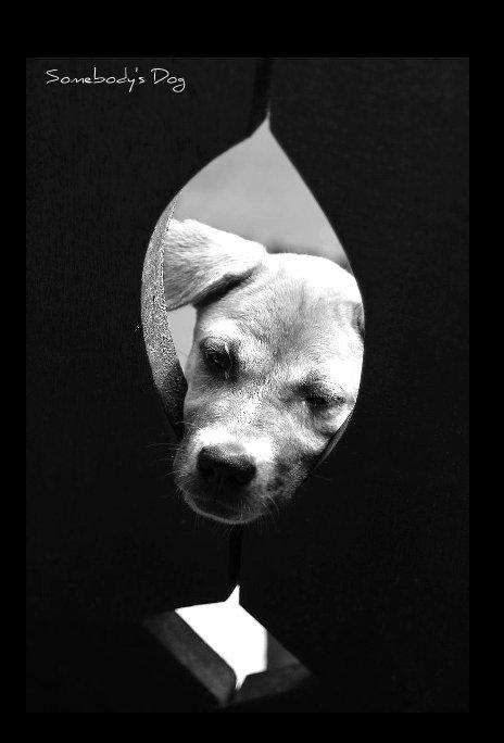 View SOMEBODY'S DOG by Sandra Miller