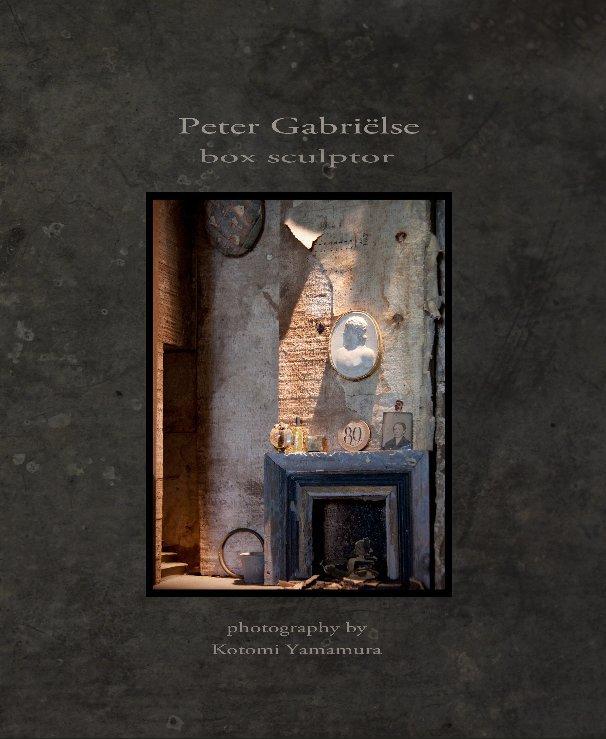 View Peter Gabriëlse -  box sculptor by Kotomi Yamamura