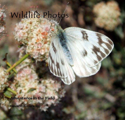 View Wildlife Photos by Howard O. Clark, Jr.