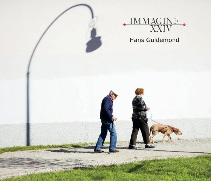 Bekijk IMMAGINE XXIV 'Nederlands' op Hans Guldemond