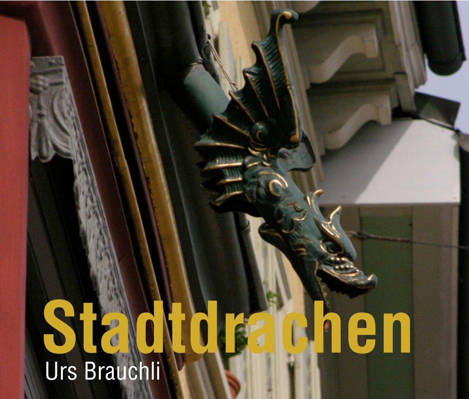 View Schaffhauser Stadtdrachen by Urs Brauchli