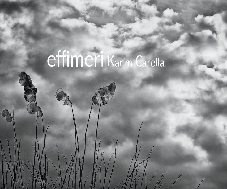 Visualizza effimeri di Karim Carella