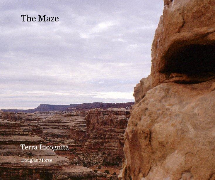 View The Maze by Douglas Morse