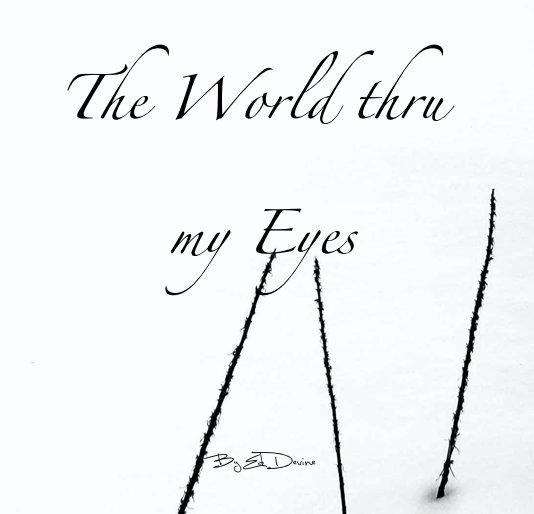 View The World thru my Eyes by Ed Devine