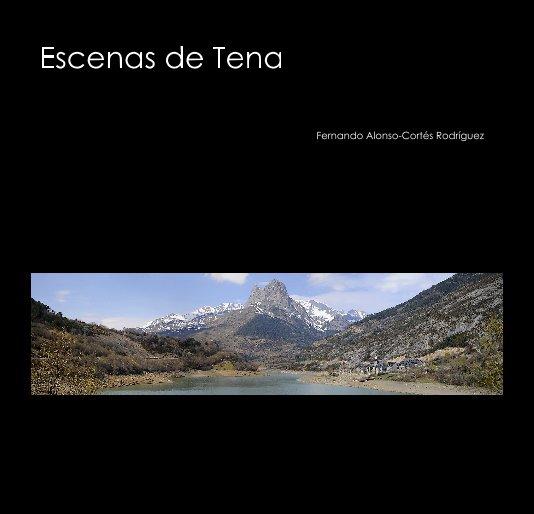View Escenas de Tena 2009 (ed. bolsillo) by Fernando Alonso-Cortés Rodríguez