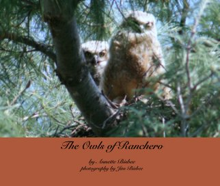 The Owls of Ranchero book cover