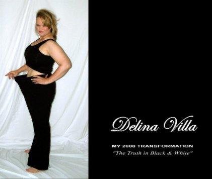 Delina Villa book cover