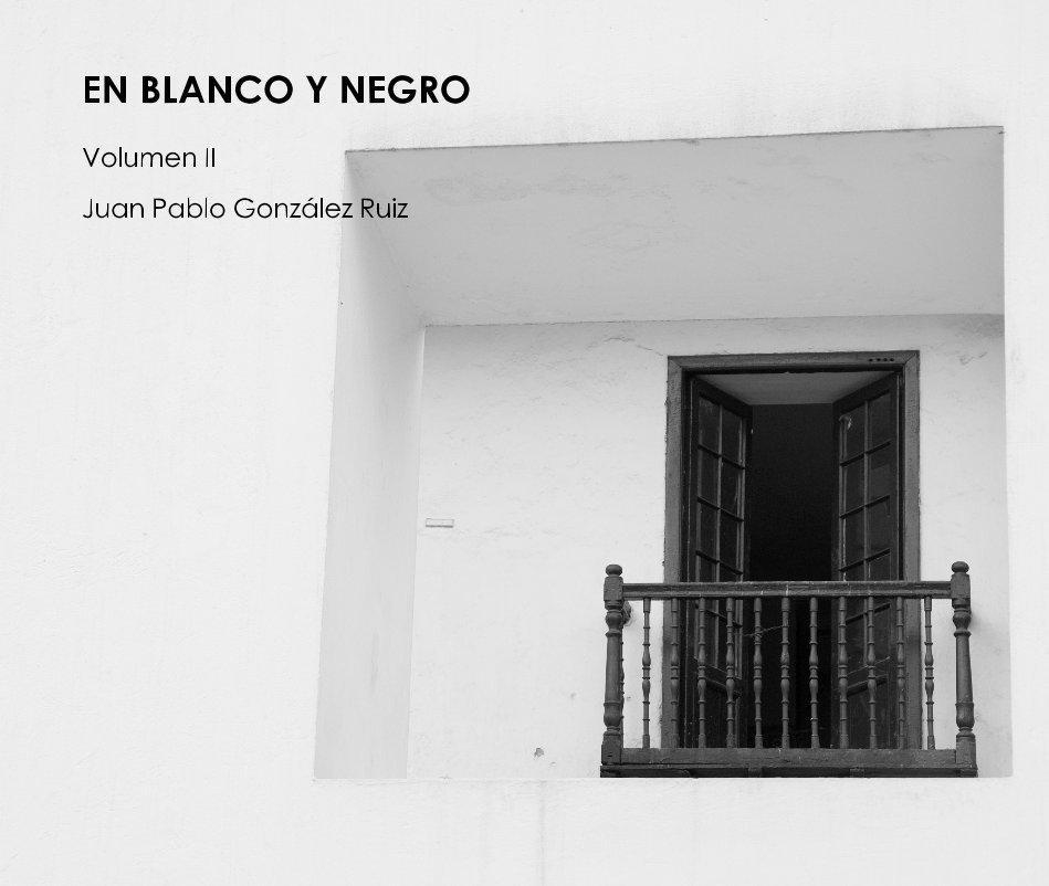 View EN BLANCO Y NEGRO II (Grande) by Juan Pablo González Ruiz