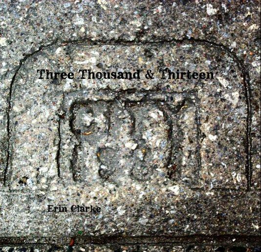 View Three Thousand & Thirteen by Erin Clarke
