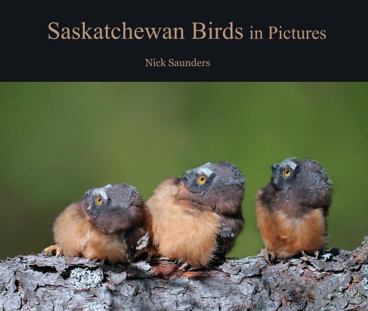 View Saskatchewan Birds in Pictures by Nick Saunders