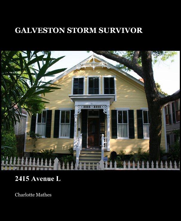 View GALVESTON STORM SURVIVOR by Charlotte Mathes