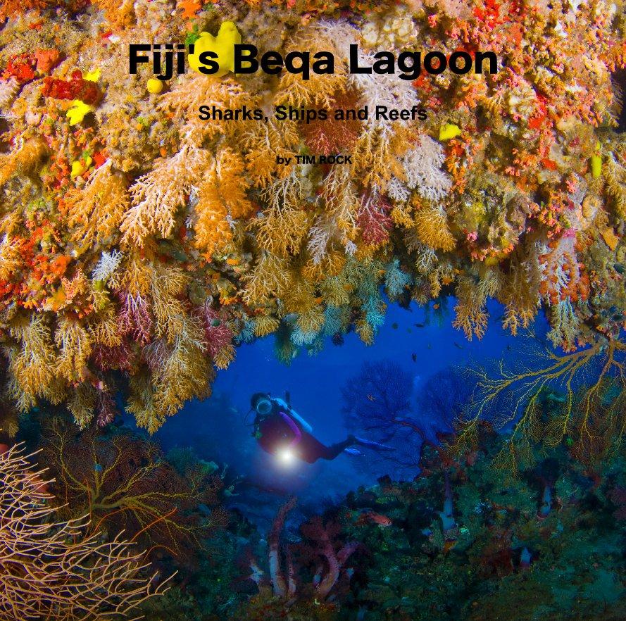 View Fiji's Beqa Lagoon by TIM ROCK