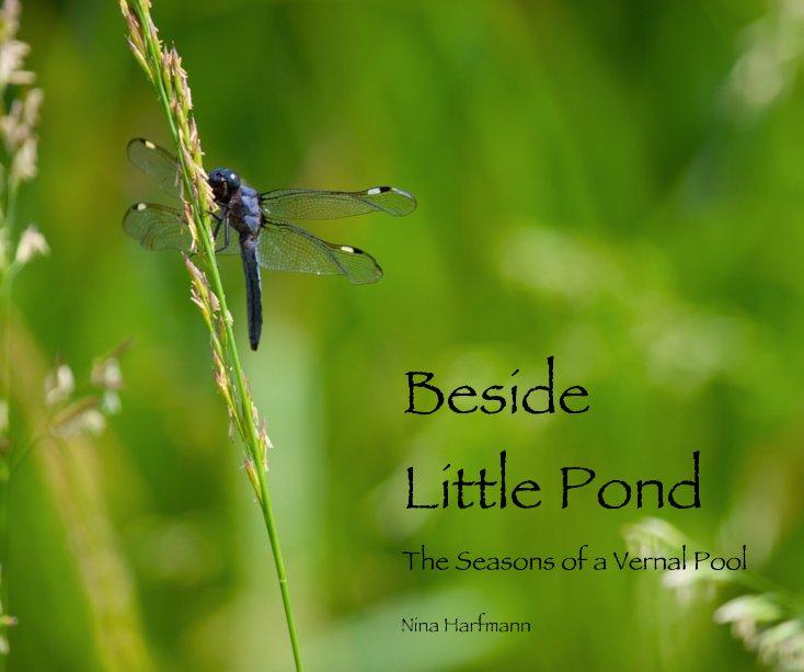 View Beside Little Pond by Nina Harfmann