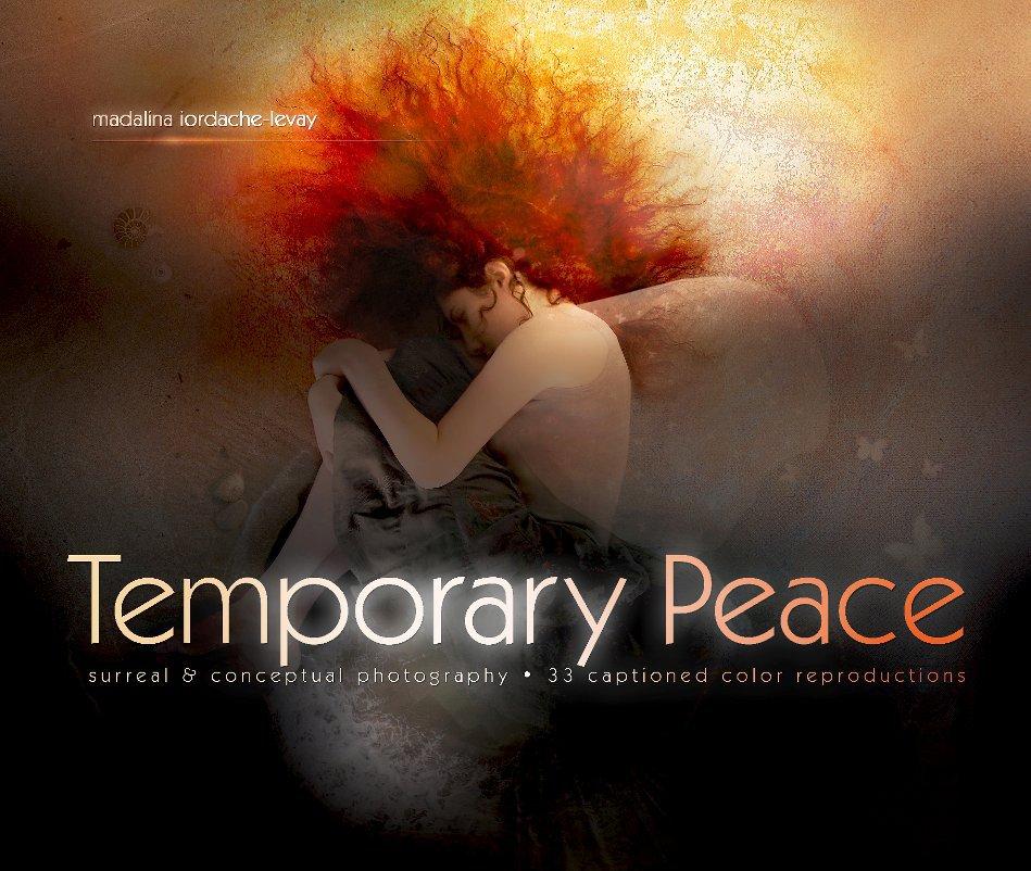 View Temporary Peace by Madalina Iordache-Levay