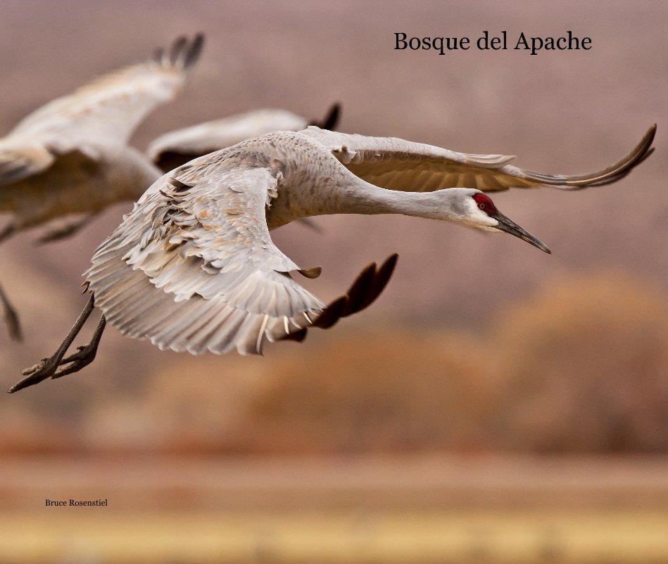 View Bosque del Apache by Bruce Rosenstiel