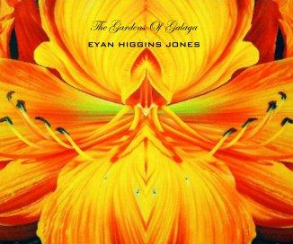 The Gardens Of Galaga book cover