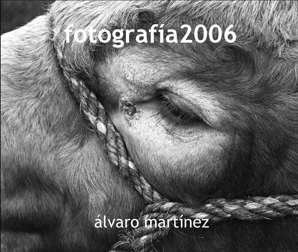 Ver fotografía2006 por álvaro martínez