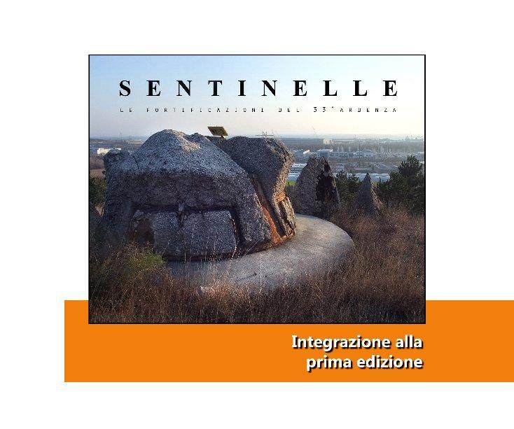 Visualizza Sentinelle - Integrazione alla prima edizione di Buzz Midnight