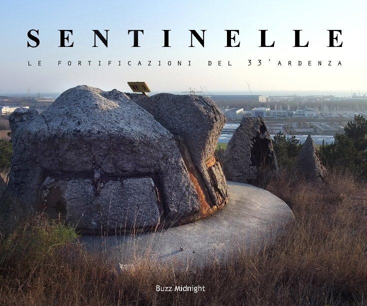 Visualizza Sentinelle (Seconda edizione) di Buzz Midnight