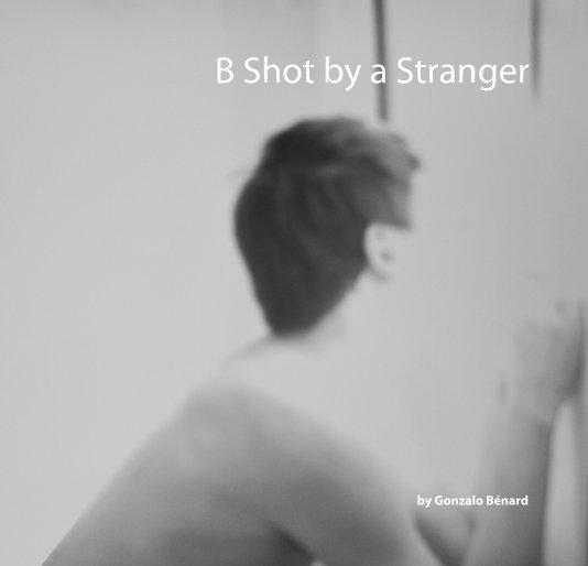 View B Shot by a Stranger by Gonzalo W. Bénard