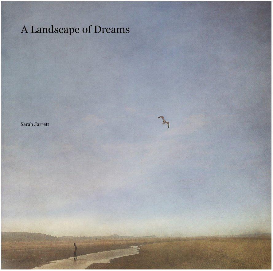 View A Landscape of Dreams by Sarah Jarrett