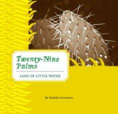 Twenty-Nine Palms book cover