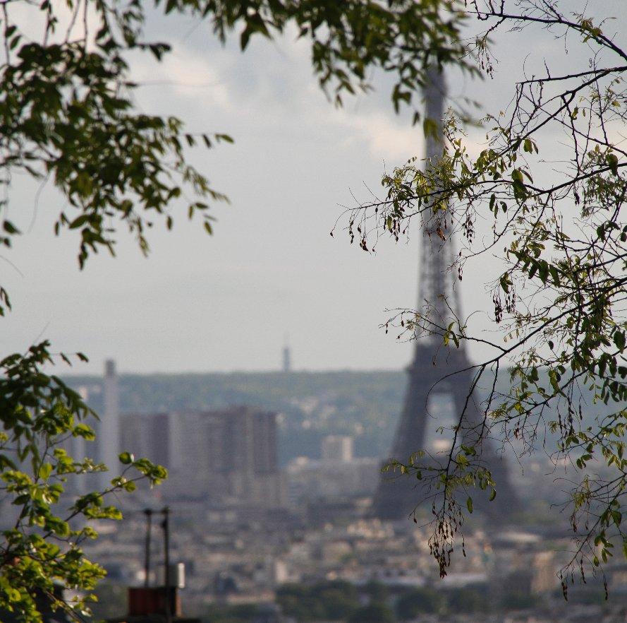 View Paris by Dina Torrans